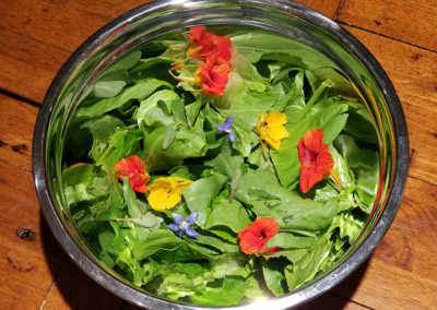 A true garden salad with edible flowers from the garden