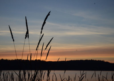 Wolfe Lake Sunset with Tall Grasses
